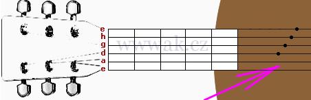 zápis tabulatury a rollů